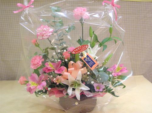 arrangement01